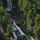 Southeastern Waterfalls by Karen Kaleta