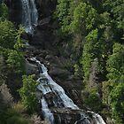Southeastern Waterfalls by Karen Kaleta