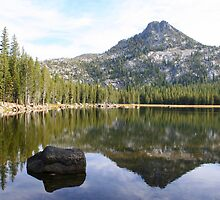 Mountain Reflection in Lake Anthony by Laurel Talabere