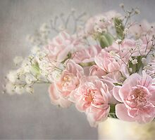 Pinks by Mandy Disher