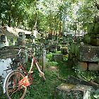 Old villagers bicycle - Cambodia by biancamarks