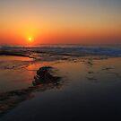 Terrigal Sunrise by Mike Salway
