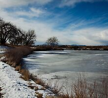 The Frozen Lake by Belle Farley