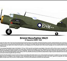 Bristol Beaufighter MK21 Profile by coldwarwarrior