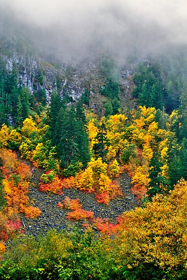 Hillside colours by zumi