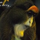 Sorry Monkey by Ron  Hanson