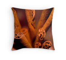 Cinnamon  Swirl Throw Pillow