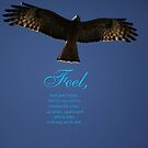 Feel ! by SheosArtShop
