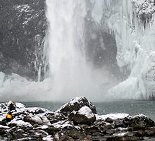 Snow Shower at Snoqualmie Falls by Tori Snow