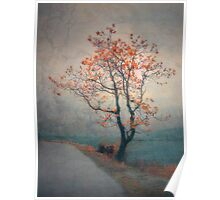 Between Seasons Poster