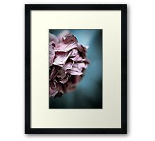 ...there came a time when it all became clear... Framed Print