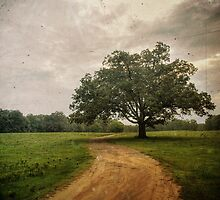 The Long And Winding Road by Evan Leavitt