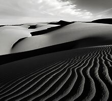 Late Shadows by Sherrie Chavez