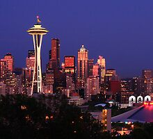 Seattle Cityscape by Anne McKinnell