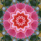 Flower mandala 2 by medley