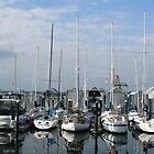 Olympia Marina, Washington by skreklow