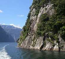 Doubtful Sound New Zealand by amuigh-anseo