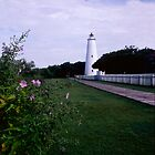 Ocracoke Lighthouse, Ocracoke Island North Carolina USA by Jeremiah Keenehan