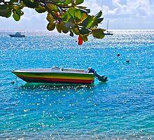 rasta boat off shore of Esperanza by marcy413