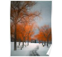 The Colours of Winter Poster