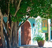 wine bar & restaurant, Esperanza| Vieques | PR by marcy413