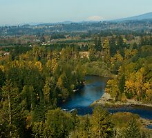 View from McIver Park  by heylisa
