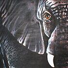 Elephant by Cherie Roe Dirksen