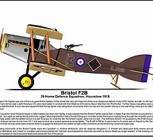 Bristol F2B World War One Fighter by coldwarwarrior