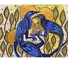 Three Ravens Photographic Print