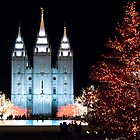 Reflection Pond at Temple Square by indeannajones