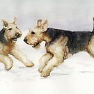 Tis the Season to be Jolly Airedale Watercolor Painting by Charlotte Yealey