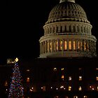 Christmas in DC by dcborn