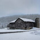 Farmland Snow Squall by Gene Walls