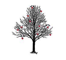 THE LOVE TREE Photographic Print