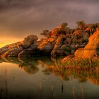 Willow Rock by Bob Larson
