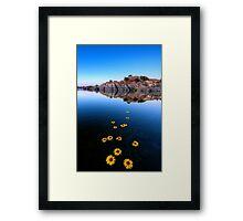 Sunflower Stretch Framed Print