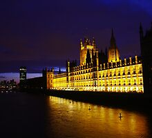The house of parliament by Régis Charpentier