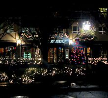 Near Christmas in Princeton  by Rick  Todaro