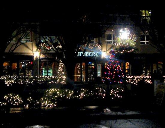 Near Christmas in Princeton  by Rick  Todaro