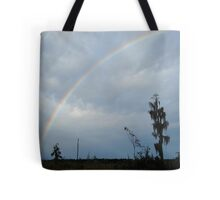 Rainbow over Econfina Creek 12/09 Tote Bag