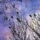 Birds of a Feather by angelandspot