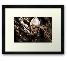 The Viking Warrior Framed Print