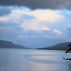 Loch Rannoch Trees  by Lindamell