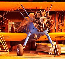 STEARMAN P-17, EARLY MORNING by Duane Salstrand