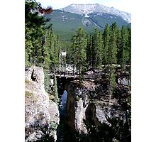 A Wilderness Bridge Photographic Print