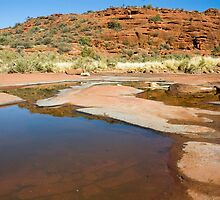 Finke River - Palm Valley by Dilshara Hill