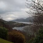 Loch Ness from Foyers Lodge by Scott  Andrew