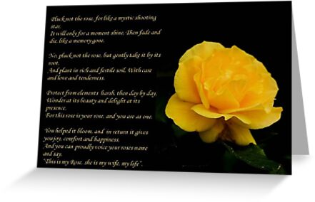 Yellow Rose Greeting Card With Verse - Pluck Not the Rose  by taiche