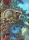 Treed Raccoon Lake Tahoe  by Elaine Bawden
