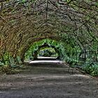 Time Tunnel by Danny Clarkson